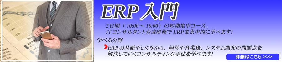 ITコンサルタント育成研修(ERP入門)