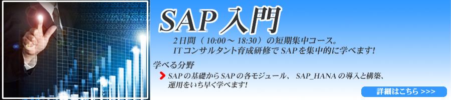 ITコンサルタント育成研修(SAP入門)